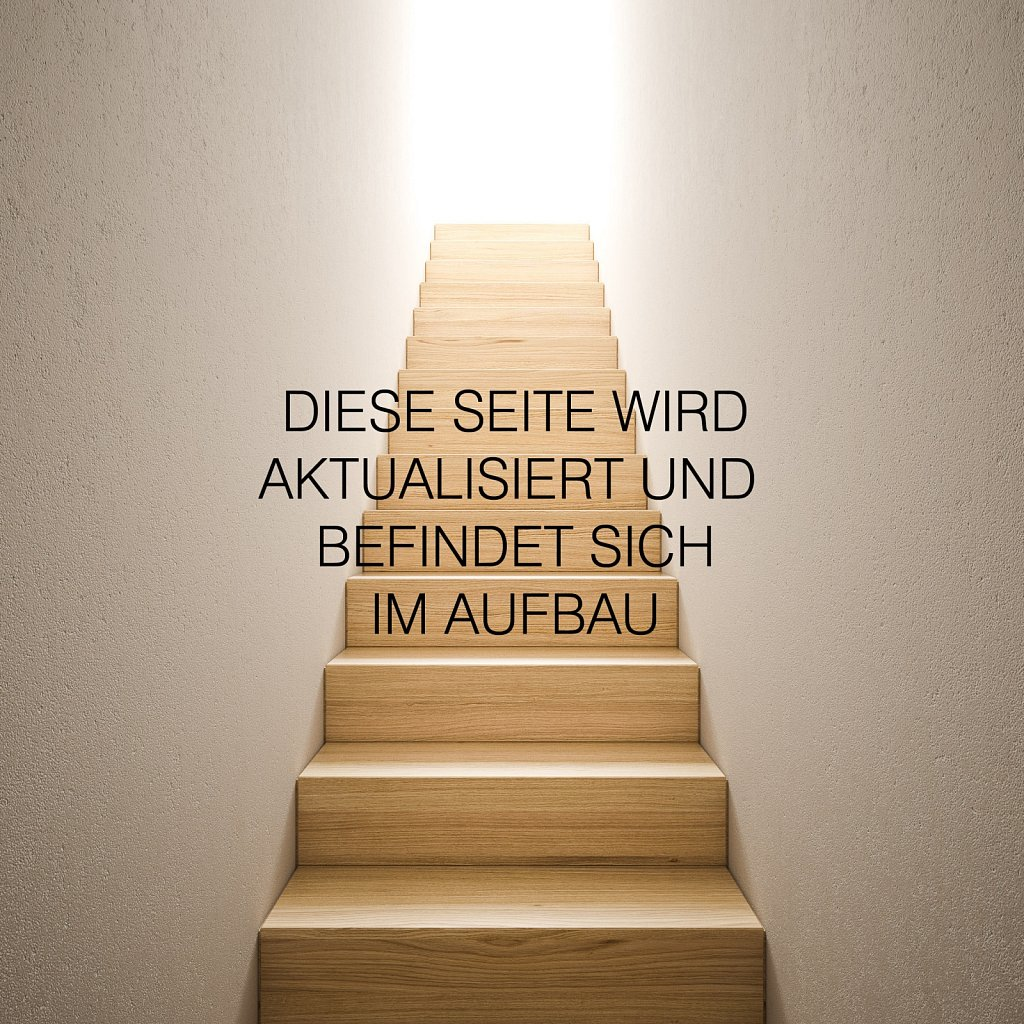 treppe-neu1-kam11-1b-seite.jpg